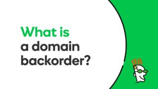 What Is a Domain Backorder? | Godaddy